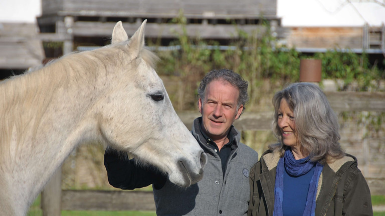 Equine-Coaching Workshop