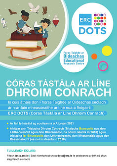 ERC DOTS Flyer Cover Irish.jpg