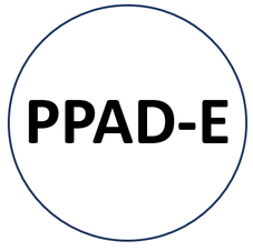 Post-Primary Assessment and Diagnosis - English (PPAD-E)