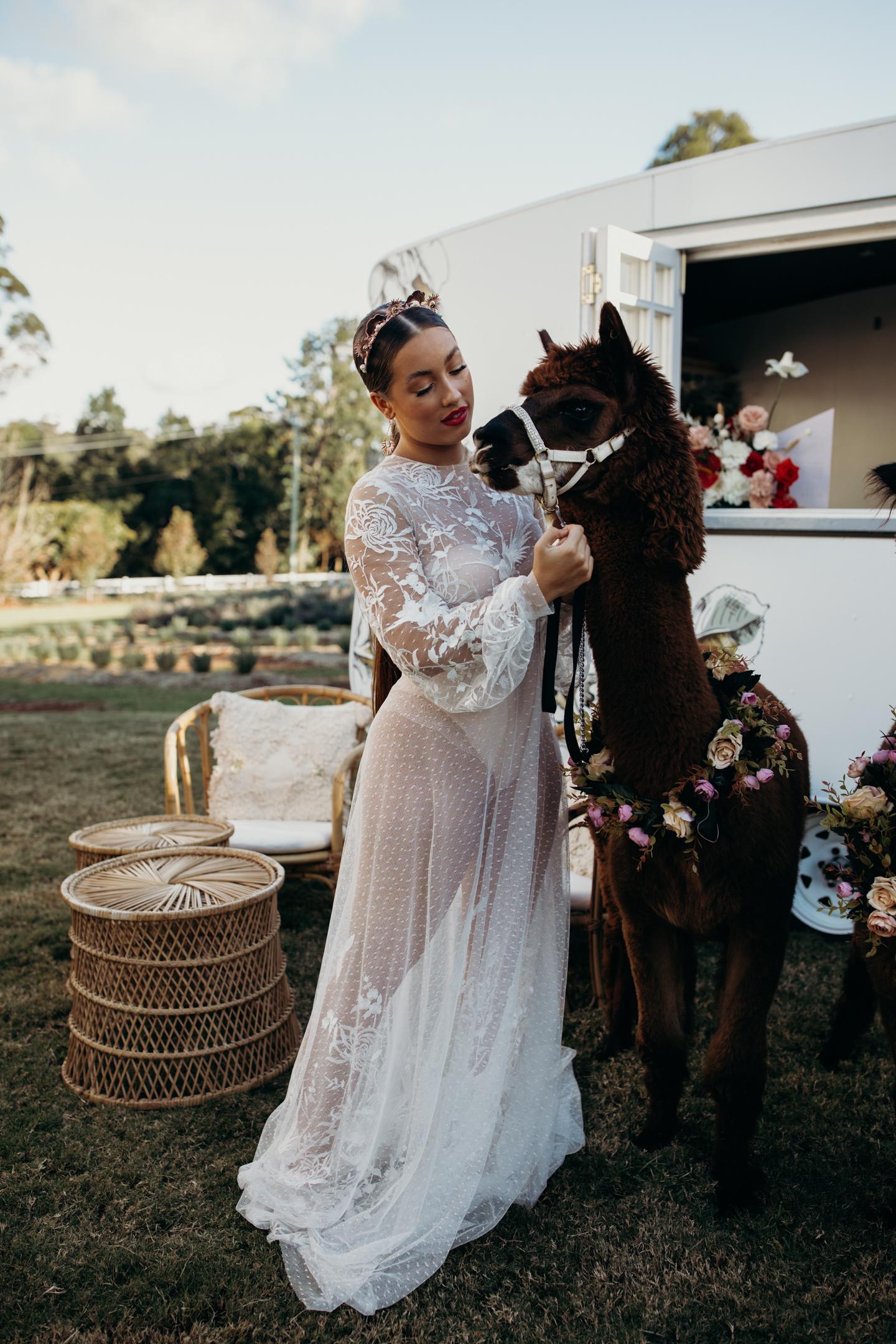 Risanare Bridal Shoot-115