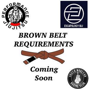 brown belt.jpg
