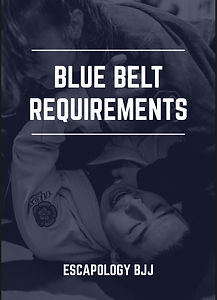 Blue belt requirements page.jpg