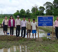 Laos FFS Farmers' Field Studies in Sekon
