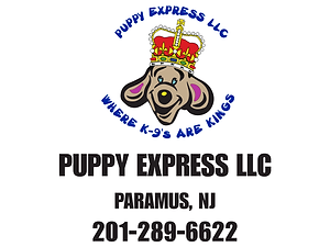 Puppy Express LLC