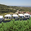 Thumbnail: 5+1/6+1  Villas with Pool, Garden and Seaview in Oba, Alanya