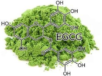 matcha-green-tea-EGCG-molecule.jpg