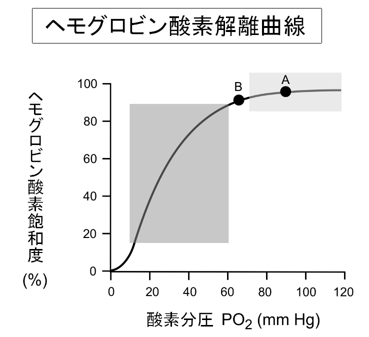 濃度 血 肺炎 酸素 中 肺炎時における酸素の取り込みが良くなる体位について知りたい|ハテナース
