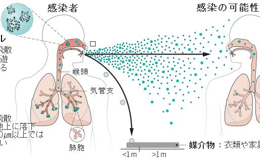 No.205 新型コロナウィルス感染症の空気感染説
