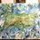Thumbnail: Mi Tierra