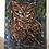 Thumbnail: The Owl