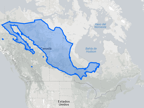 Mex map.png