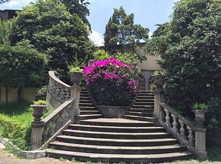 hacienda leones.jpg