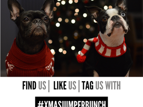 #XMASJUMPERBUNCH