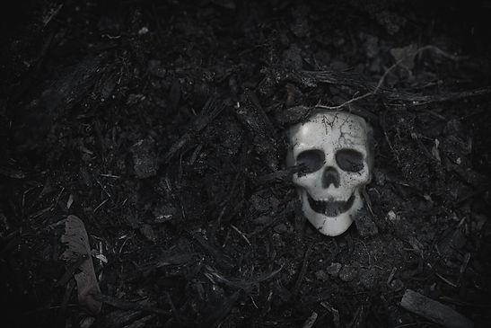 human-skull-on-ground-PBXCKSE.jpg