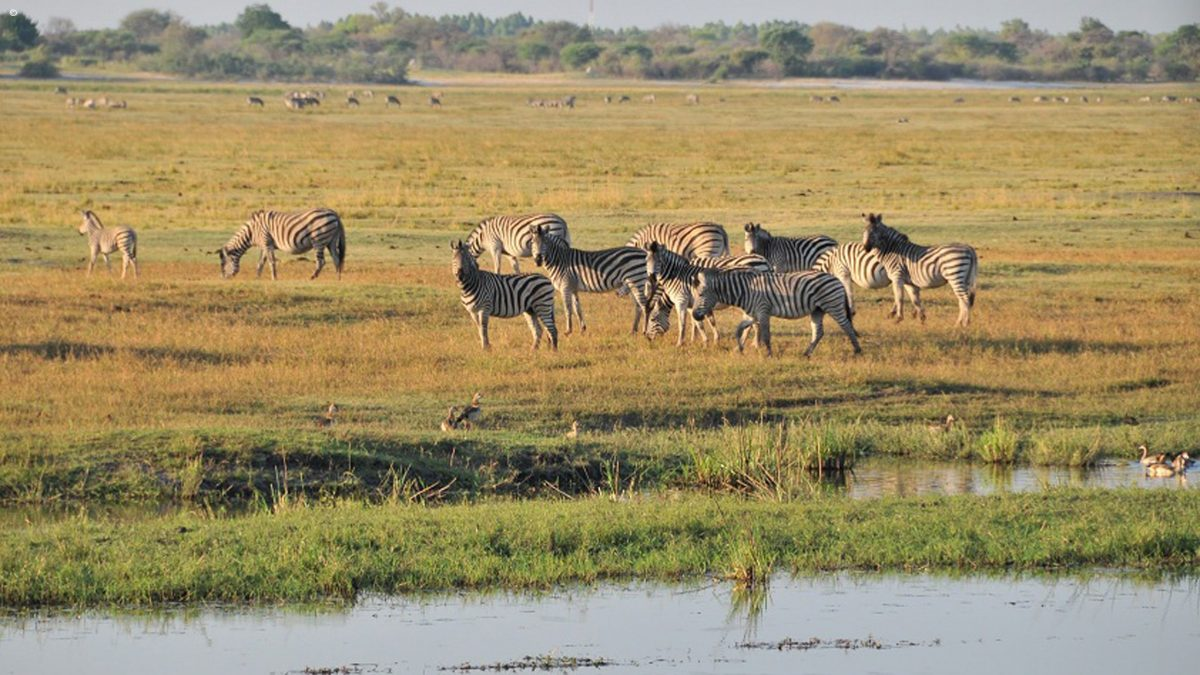 Ngoma_Safari_Lodge_SD_BSC_07