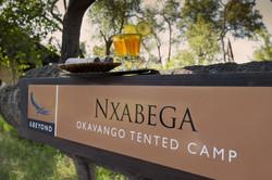 Nxabega_aB_BSC_37