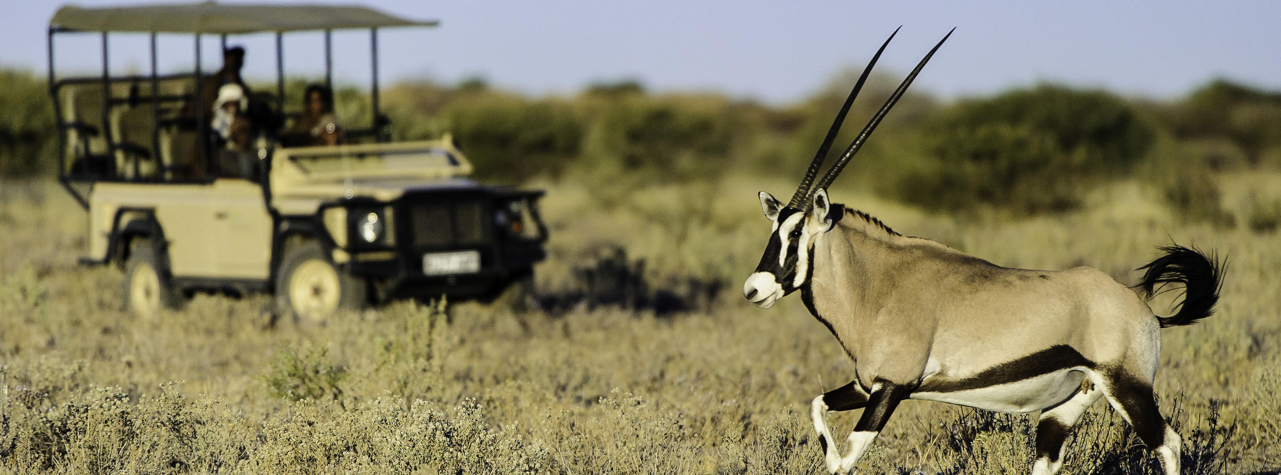 Camp_Kalahari_UA_BSC_13