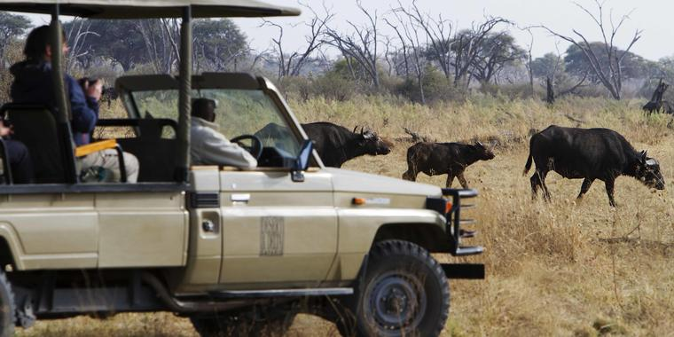Savute_Safari_Lodge_DD_BSC_18
