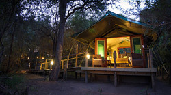 Mashatu_Tented_Camp_S_BSC_10