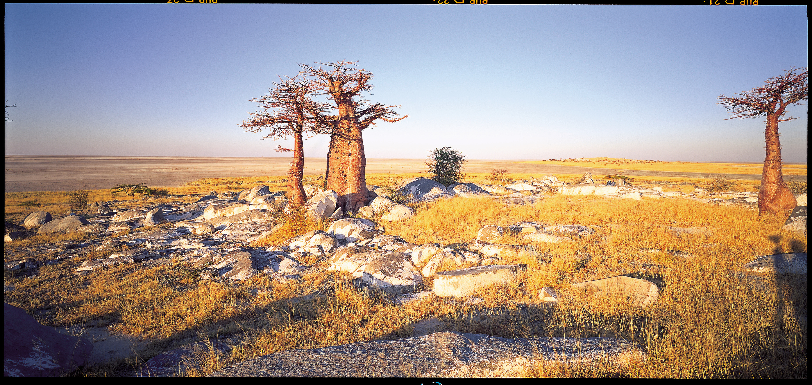 Camp_Kalahari_UA_BSC_08