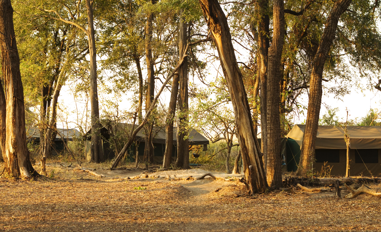Footsteps_Ker_Downey_Botswana