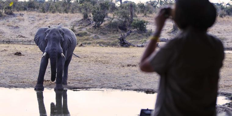 Savute_Safari_Lodge_DD_BSC_24
