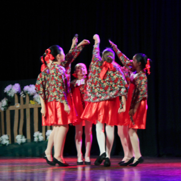 Our dancers performing in festivals, charity concerts, end-of-year concerts and special events