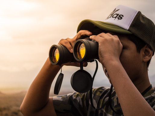 Freelance Corona Monitor