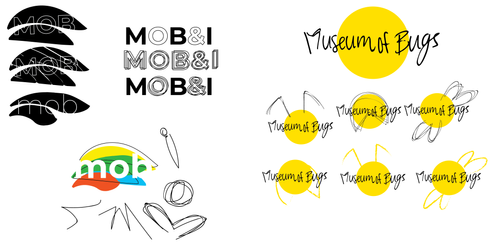 insect branding project process-11.png