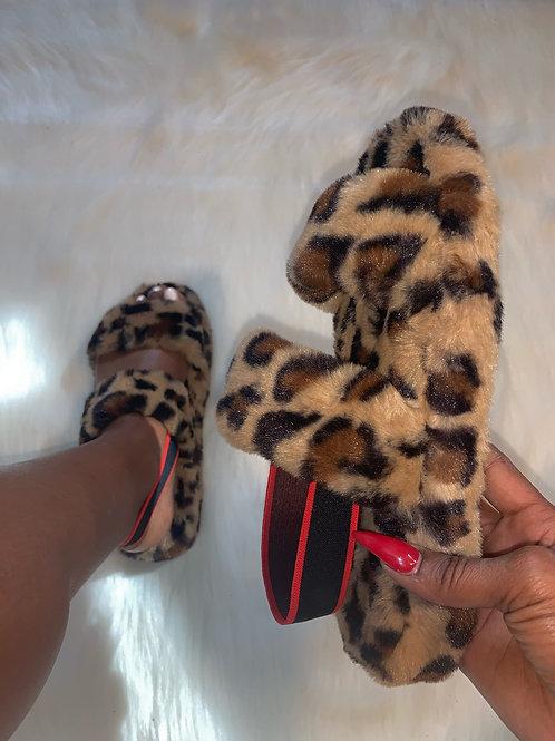 Snuggles - Leopard