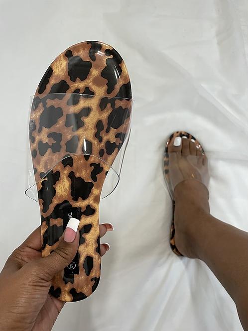 Outside - Leopard