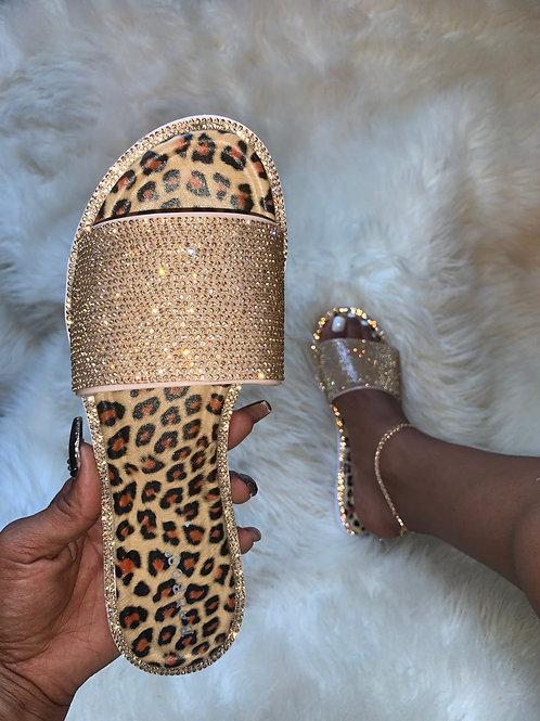 Flashy - Gold Cheetah