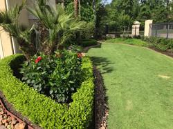 Lawn Care Carlton Woods