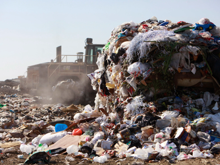 The Woodlands wastes approx. 28+ million lbs of food!