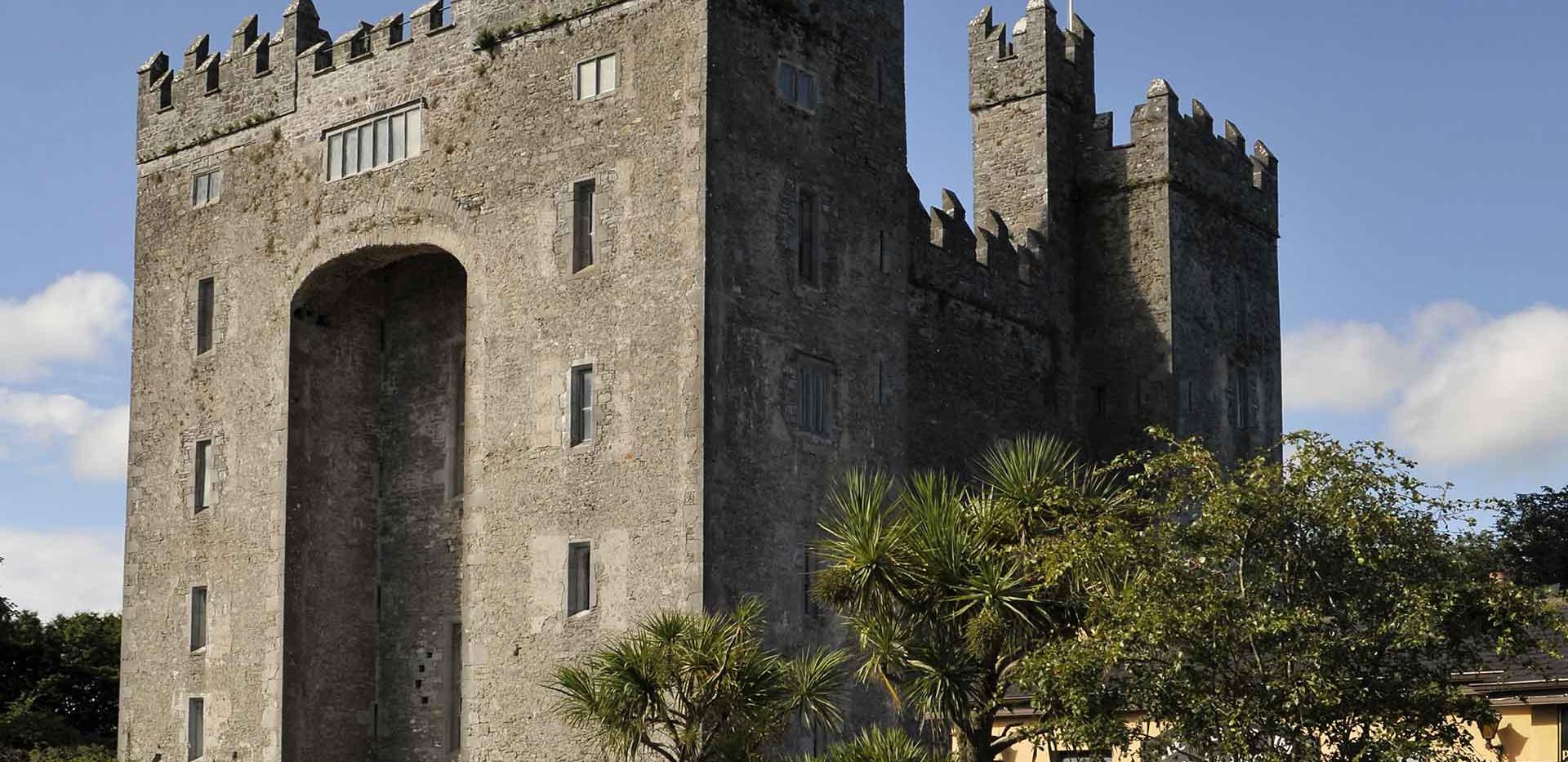 snn-dev-bunratty-castle-3.jpg