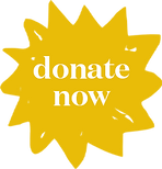 donate now yellow.png