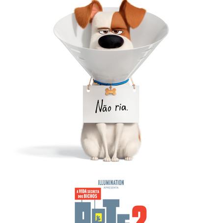 PETS - A VIDA SECRETA DOS BICHOS 2 3D  +6 anos