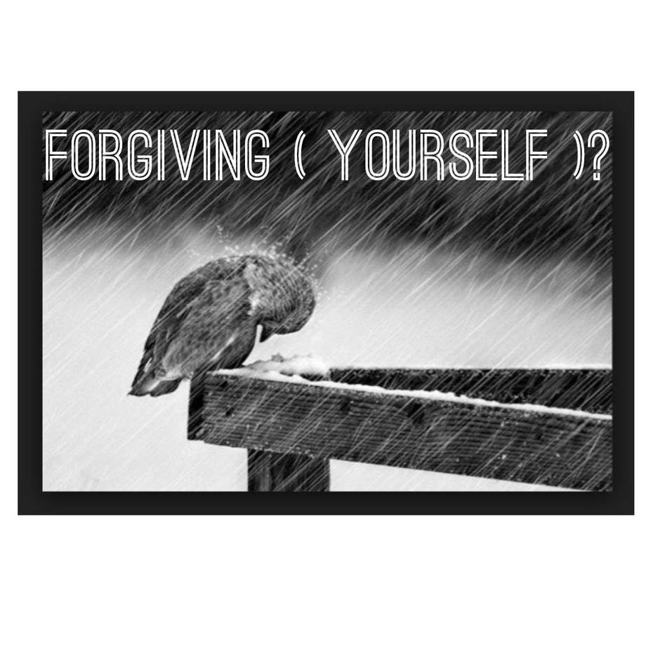 Forgiving ( yourself )?