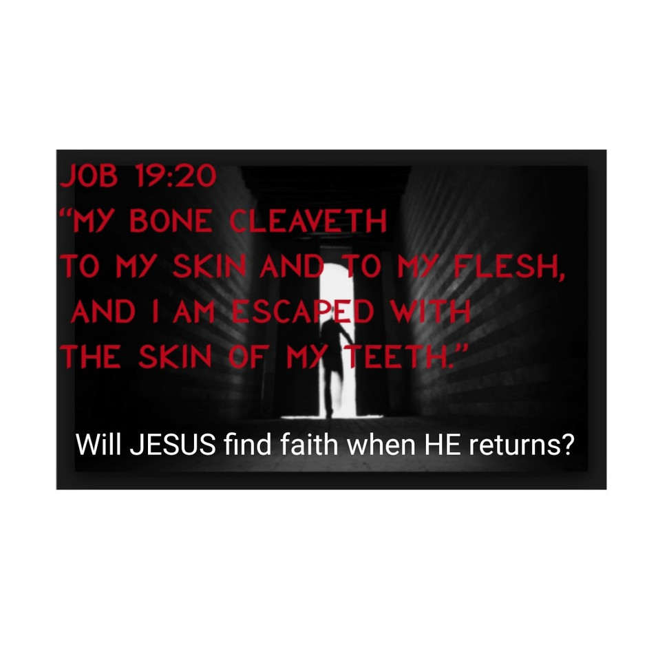 When JESUS returns will HE find faith?