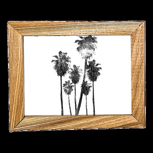 Hollywood Palms Micro