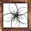 Thumbnail: Plumeria