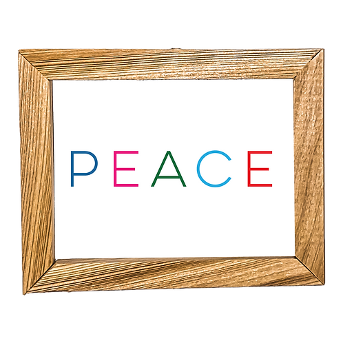 Peace Micro