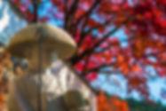 Shikoku_Cover.jpg