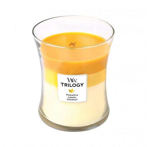 FRUITS OF SUMMER TRILOGY MEDIUM HOURGLASS CANDLE