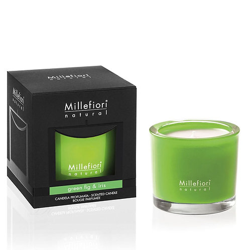 SCENTED CANDLE GREEN FIG & IRIS