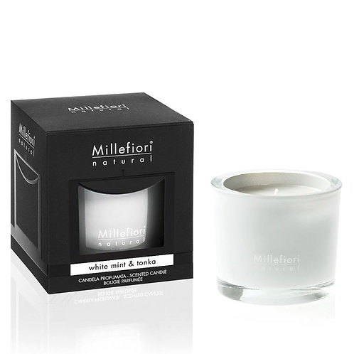 SCENTED CANDLE WHITE MINT & TONKA