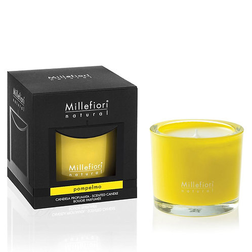 SCENTED CANDLE POMPELMO