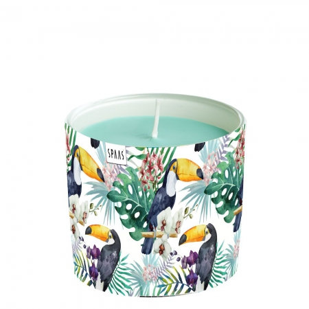 UNSCENTED CANDLES TOUCAN