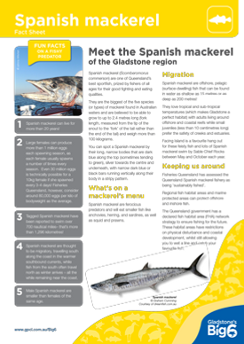 Fish_Spanish-mackeral_Fact-Sheet.png