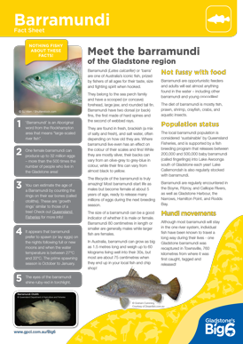 Fish_Barramundi_Fact-Sheet.png